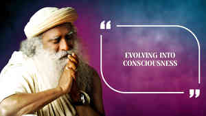 Evolving into Consciousness