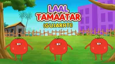 Laal Tamaatar