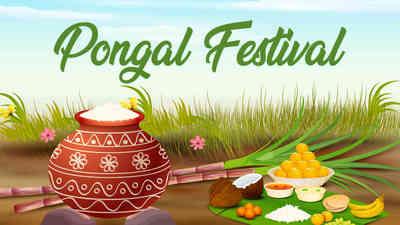 Pongal Documentry