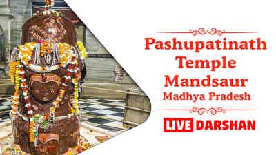 Shree Pashupatinath Temple, Mandsaur, Madhya Pradesh
