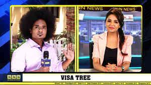 Visa Tree